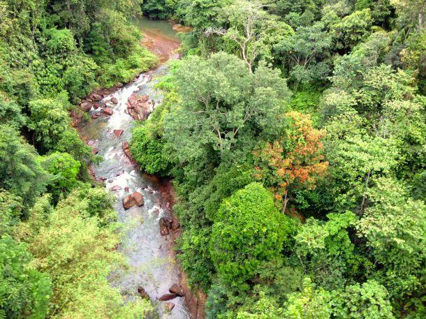 Fraser's Hill - River