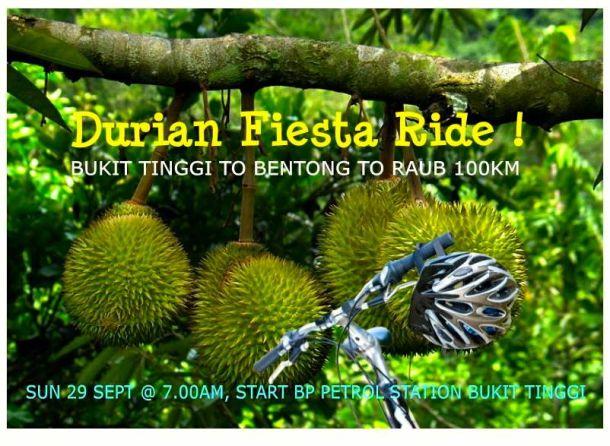 Durian Fiesta Banner