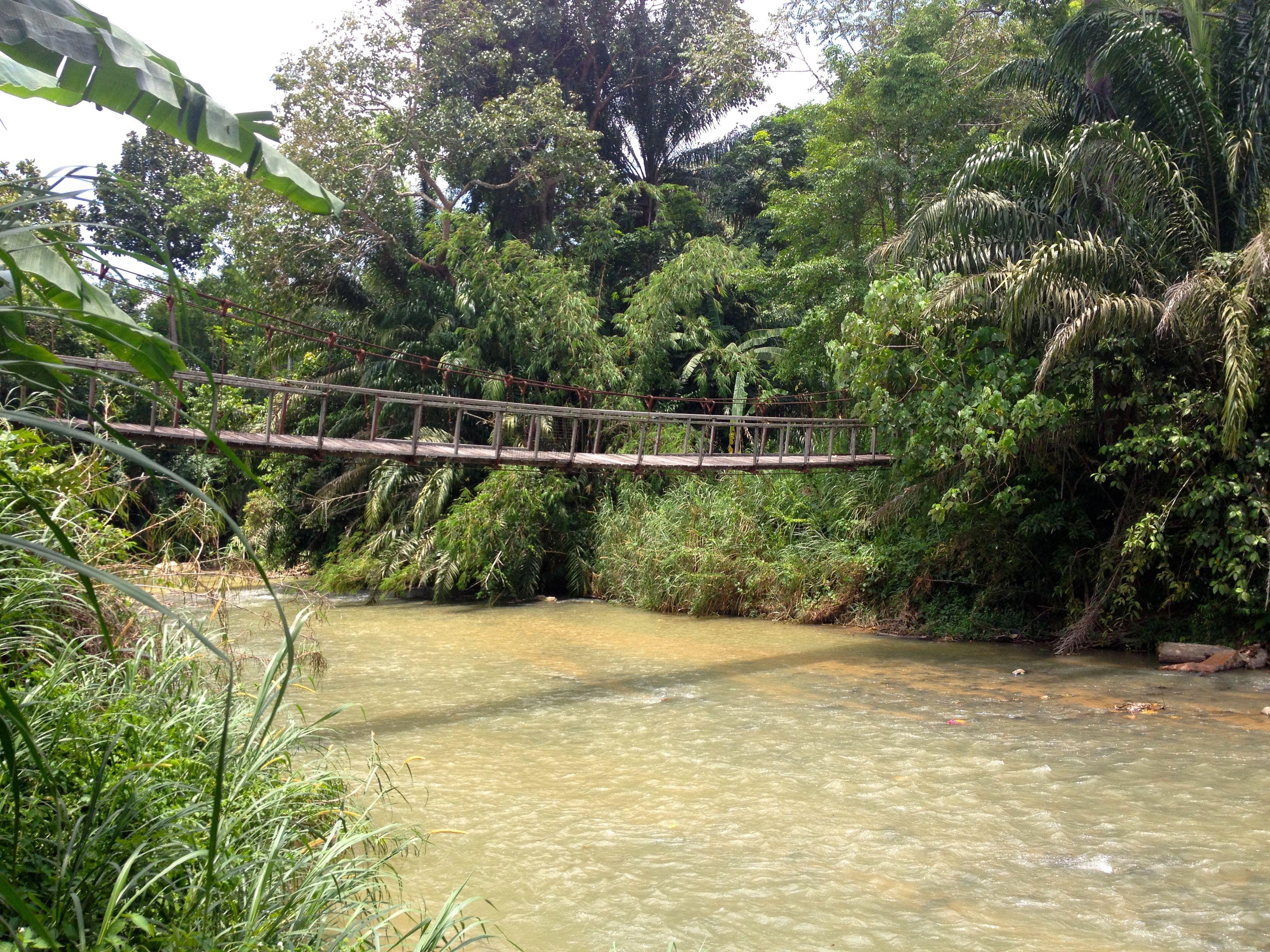 Durian Fiesta Sungai Benus Bridge