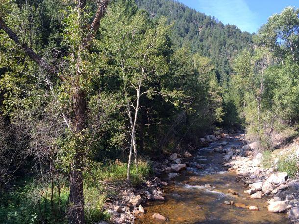 Cognoscenti Day 5 Creek