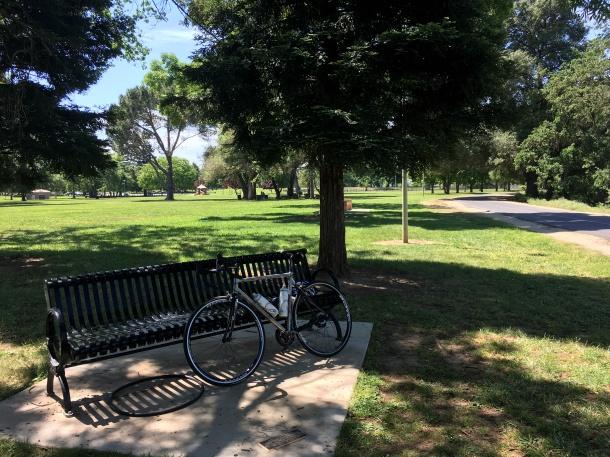 American River Bike Trail Park Bench