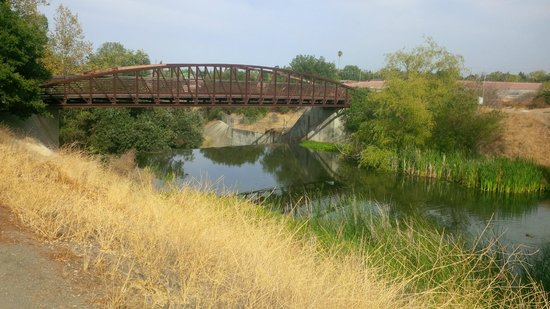 Los Gatos Creek Trail TripAdvisor