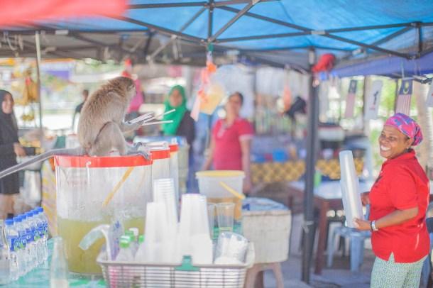 BCG Tour Kajang - Melaka - Kajang Day 1 Coconut 2