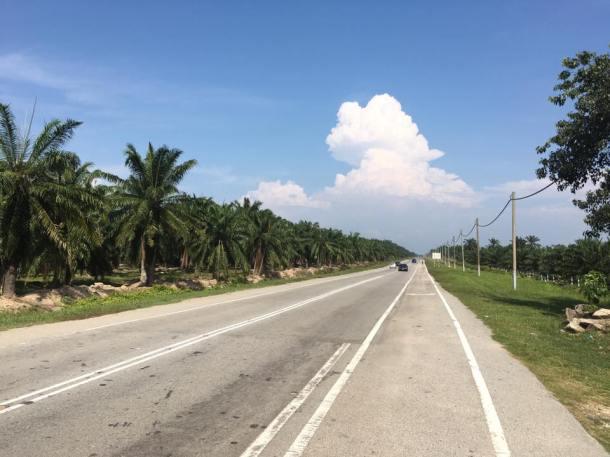 BCG Klang - PD - Day 1 Tanjung Sepat Johan