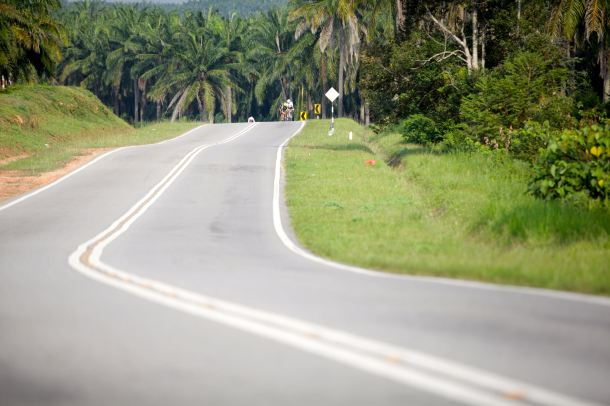 BCG Klang - PD - Day 2 Kampung Chuah Oil Palm