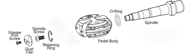 Bearings Pedal Disassembly