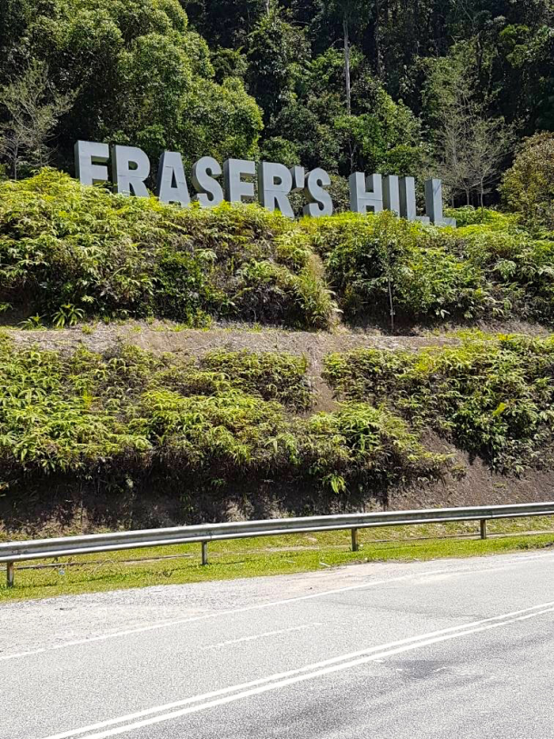 Fraser's Sign Kelin Chan