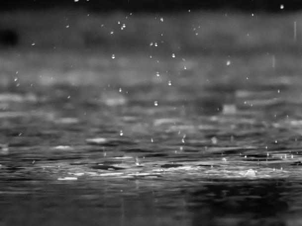 Day 2 Rain Photo by reza shayestehpour on Unsplash