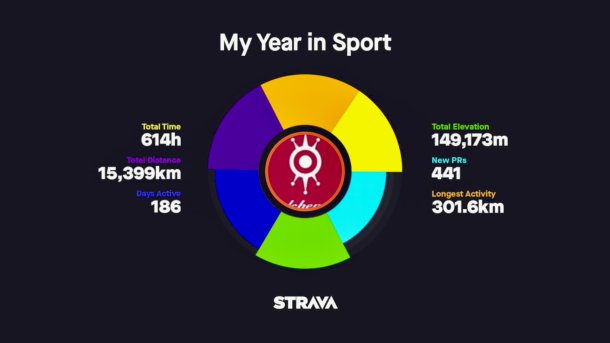 2017 Strava My Year in Sport