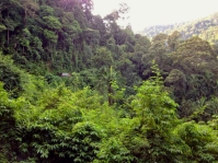 GS Road View 4