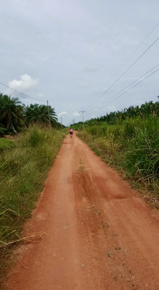Off Road 4 Mark Lim