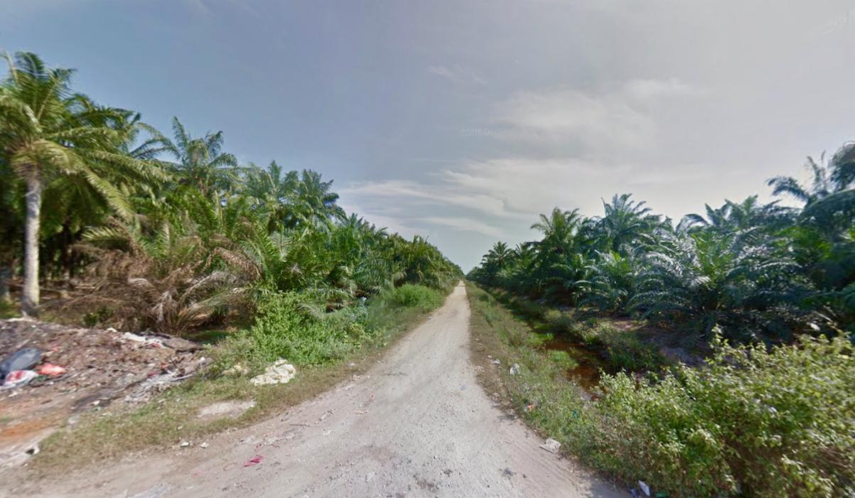 Tanjung Sepat Jalan Kenangn Lama 2