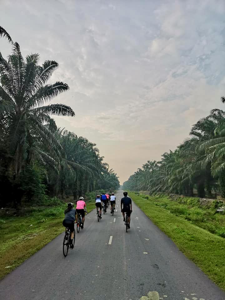 Tanjung Sepat Road 2 Mark Lim