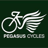 Day 4 Pegasus